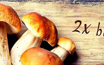 2 balení zimní sadby lesních hub: vypěstujte si doma vlastní houby!
