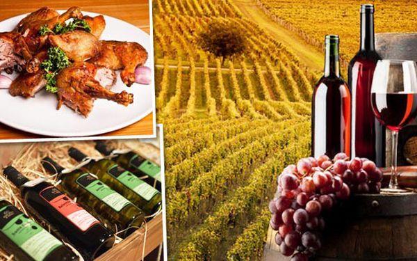 Nenechte si ujít vinařský pobyt na Moravě!