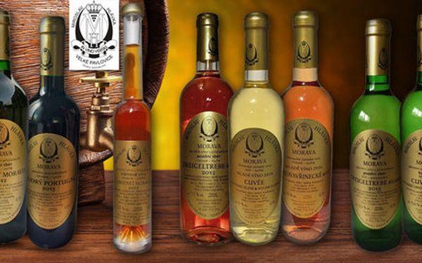 Kolekce 6 kvalitních vín z vinařství Hlávka