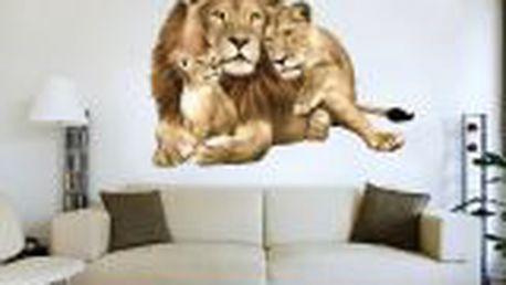 Dekorativní samolepka na zeď Lví rodinka