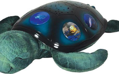 Hvězdná mořská želvička