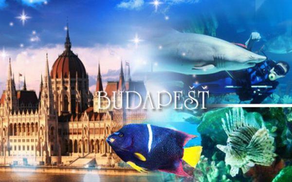 Zájezd za zajímavostmi Budapešti pro 1 osobu včetně dopravy, 1x ubytování a průvodce!