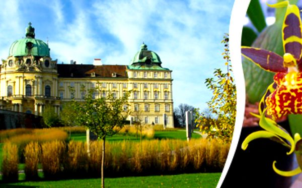 Výstava orchidejí + klášter Klosterneuburg + Vídeň: 1denní zájezd.