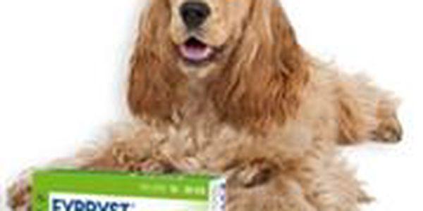 Fypryst Spot-on Dog M k léčbě a prevenci napadení blechami a klíšťaty