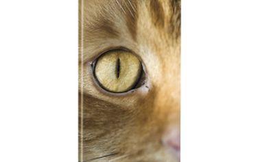 Kapesní plánovací měsíční - Kočky, diář 2015, 8 x 18 cm