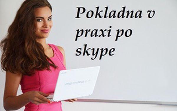 Pokladna v praxi po skype - individuální