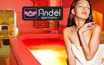 Vířivka, finská sauna a relaxační místnost: 90 min. romantiky pro dva!