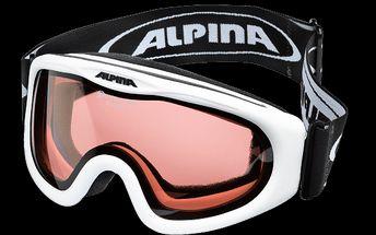 Lyžařské brýle Alpina ALPINA Skibird