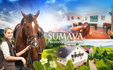 Aktivní pobyt na 3 až 7 dní pro 2 až 6 osob v útulném Pensionu U Sebastiana v šumavském podhůří!