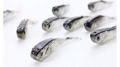 Set 10 rybiček - rybářská nástraha