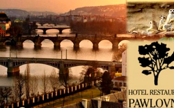 PRAHA Hotel Pawlovnia*** 3 dny se snídaněmi, vnitřním bazénem a lahví francouzského vína až do 30.4.