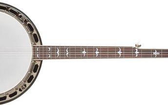 Pětistrunné banjo Recording King R36-BR