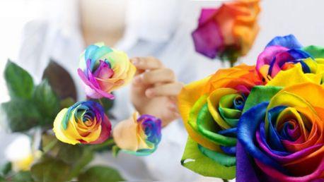 DUHOVÉ RŮŽE! 200 semen vzácné růže, které hrají všemi barvami!