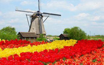 4denní zájezd za holandskými tulipány, dřeváky, sýry a větrnými mlýny pro 1 osobu