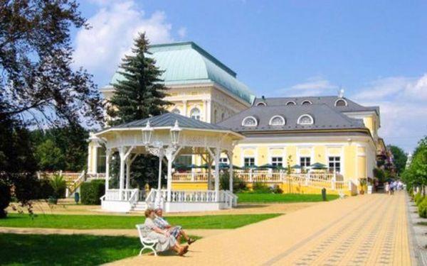 Františkovy Lázně ve wellness hotelu s polopenzí, saunou a procedurami