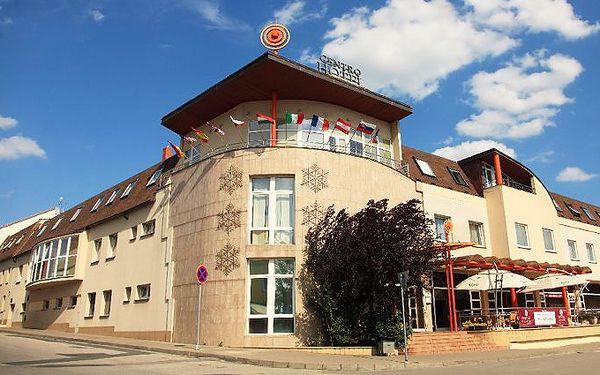 Až 3denní pobyt pro dva na jižní Moravě s polopenzí a Wine Wellness