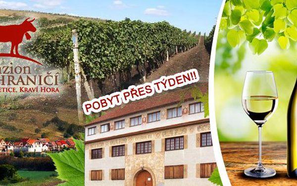 Vinařský pobyt (mimo víkend) pro dva s neomezenou konzumací vína a burčáku s rautem. Děti do 10 let zdarma!Vinárna - penzion Kraví Hora leží přímo v areálu 290 vinných sklípků a patří k nejvyhledávanějším ubytovacím objektům celého regionu.