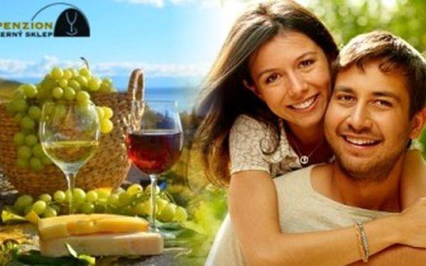 Dovolená jako víno na JIŽNÍ MORAVĚ. 4denní pobyt se snídaní a ochutnávkou vín pro 2 osoby u Znojma.