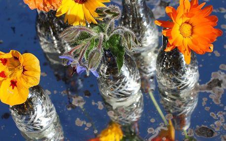 Sada 6 váz Asna
