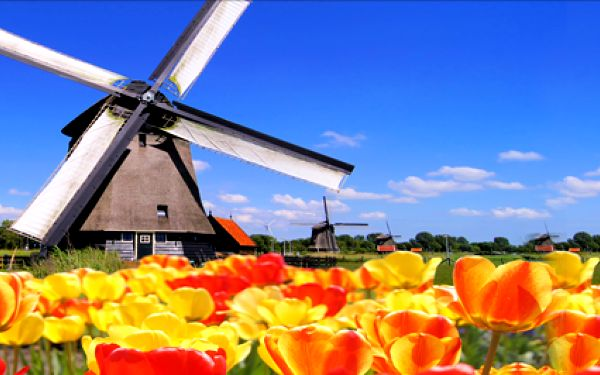 Holandsko, poznávací zájezd pro milovníky květin, diamantů a sýru. Procházka po Amsterdamu s návštěvou největšího květinového parku Keukenhof. Termíny duben - květen.