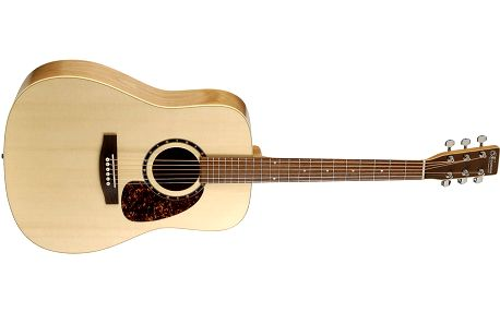 Akustická kytara Norman Encore B20
