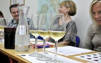 Jak rozumět vínu