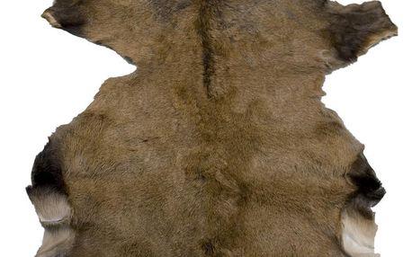Jelení kůže, 100x150 cm