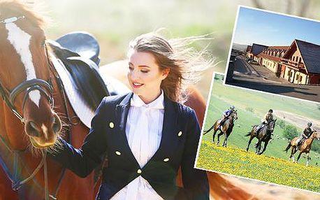 Nezapomenutelný pobyt na koňské farmě Vysoká