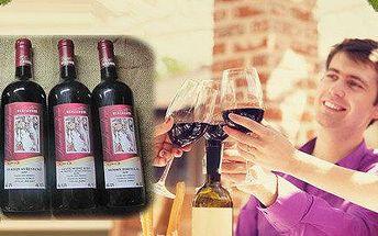 Kolekce šesti vín z rodinného vinařství Herzánovi
