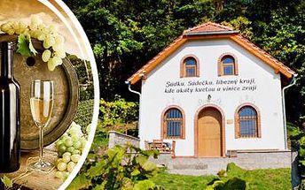 Vinařský pobyt pro 2-5 osob u TŘEBÍČE na 2 nebo 3 dny s degustací, prohlídkou vinic a občerstvením!