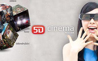 Vstupenka do 5D kina