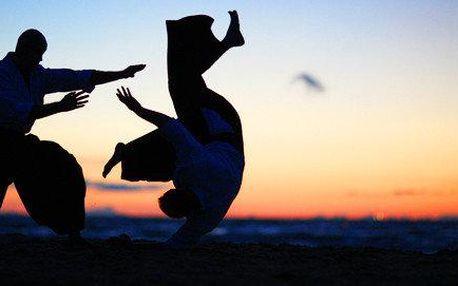 Aikido pro každého - 5 vstupů