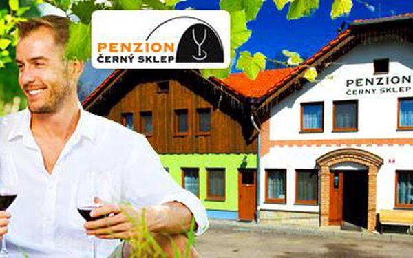 4denní pobyt pro 2 osoby v Penzionu Černý sklep: Degustace vína na jižní Moravě!