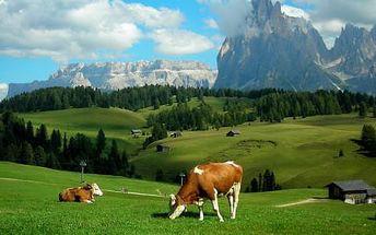 Rakouské Alpy u Hochkaru v českém penzionu se snídaní až do října 2015