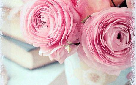 Obraz růže OBR683177