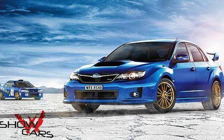 Rallye challenge v Subaru Impreza WRX STI