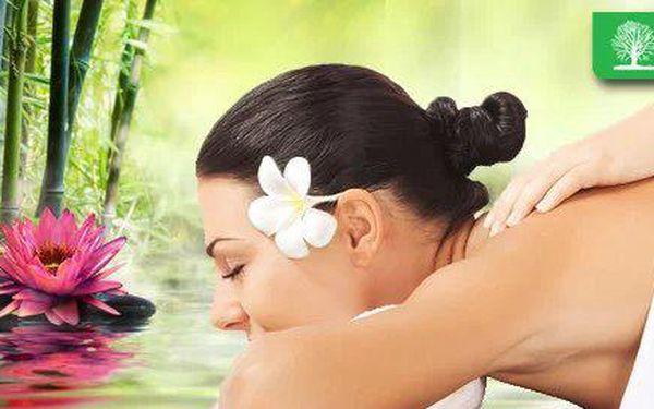 90minutová čínská energetická masáž, která udržuje organismus v plné síle