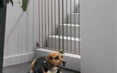 Zábrana pevná DOG BARRIER vnitřní 90 cm