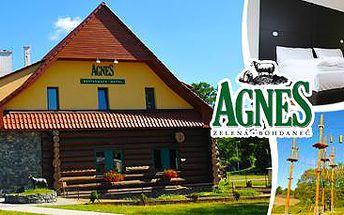 Aktivní pobyt pro dva na 3 dny v Hotelu Agnes v Bohdanči s polopenzí a návštěvou palírny destilátů!