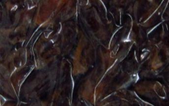 AWA superfoods Datle vypeckované 500g