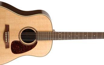 Akustická kytara Seagull Maritime SWS Rosewood SG