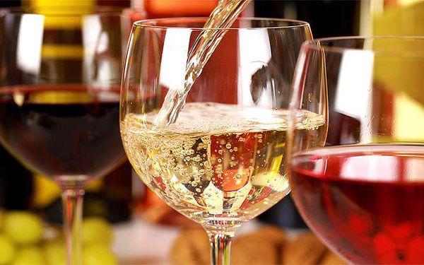 Vstupenka na volnou degustaci s občerstvením v rámci World Wine Show 2015 v Praze