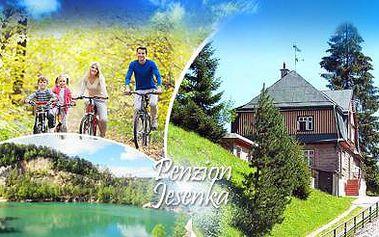 KRKONOŠE! 3, 4 nebo 8denní POBYT s bohatou POLOPENZÍ v penzionu Jesenka! Platnost až do ŘÍJNA!