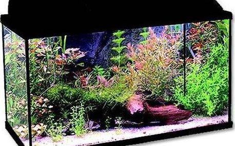 Vybavené skleněné akvárium Ante set BALI 60 x 30 x 30 cm