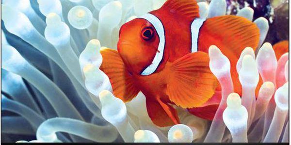 "Ultra HD televizor 55"" LG 55UB830V"
