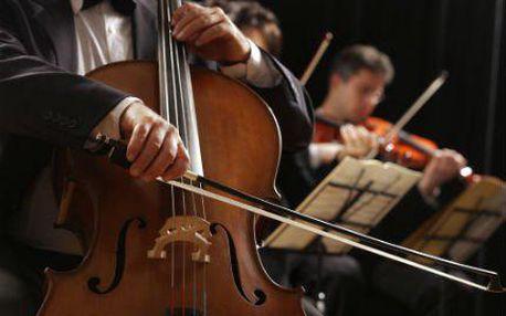 """Koncerty """"Smetana, Dvořák, Vivaldi v Obecním domě"""""""