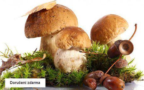 Pěstební mix 8 druhů hub – 2×10 g