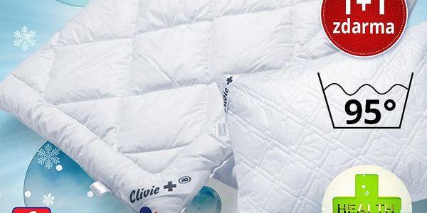 Vyvařovací ložní souprava Clivie+ 95°C 1+1 zdarma Velikost: prodloužená, 2x135x220cm+2x70x90cm