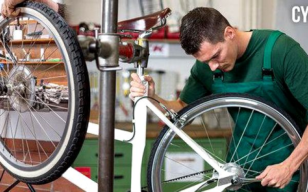 Cykloservis Standard či Standard Plus