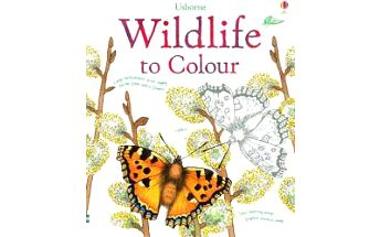 Wildlife to colour